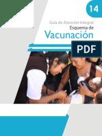 Guia Inmunizaciones