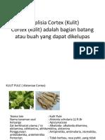 Simplisia Cortex (Kulit).pptx