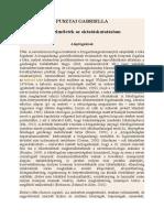 PUSZTAI GABRIELLA - Tőkeelméletek Az Oktatáskutatásban