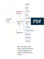 06 - Direitos Sociais.pdf