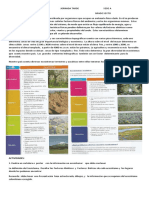 actividad de recuperacion  sexto  ecositemas.docx