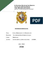 informe delimitacion cuenca sechin SANCHO.docx