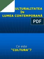 Interculturalitatea (1)