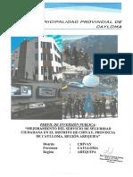 PERFIL SEGURIDAD CIUDADANA.pdf