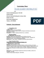 CV JULIO MARIN  2018.docx
