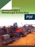 Metalurgia Extractiva 12.pdf