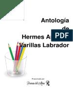 141715.pdf