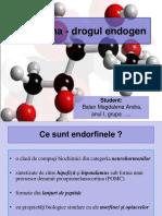 Endorfine PPT