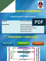 Ciclo Genital Femenino