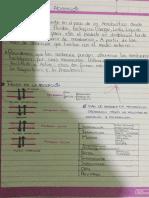 ,Manual de Adicciones Para Medicos en Formacion -Cesar Pereiro Gomez