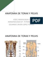 ANATOMIA_DE_TORAX_Y_PELVIS.pptx