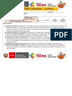 2019 Informe Semanal de Docentes Sec 30 Hras Modesto Molina
