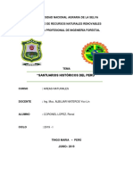 Universidad Nacional Agraria de La Selva Areas