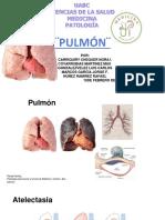 resumen pulmon.docx