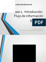 Clase-1-Introduccion-flujo-de-informacion-genetica..ppt