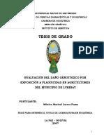 t626 Larrea Poma
