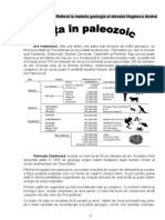 Viata in Paleozoic