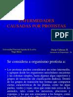 2enfermedades Causadas Por Protistas_oscar Cabezas2017