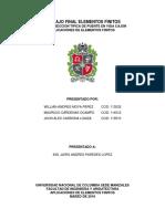 AFEM_Trabajo_Final.docx