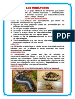 LOS MIRIÁPODOS.docx