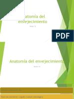 Anatomia, Fisiologia y Semiologia Del Anciano
