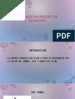 ANIMALES EN PELIGRO DE EXTINCIÓN.pptx