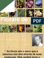 1511913962_Florais de Bach.ppt (1).pdf