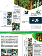 Bifoliar Bambú Carta