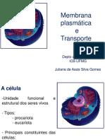 Aula membrana e transporte CHAE