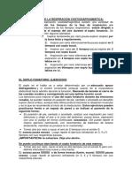 Coordinación Fonorrespiratoria Apunte UDI
