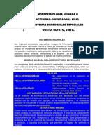 MFH+II+-+AO+13.pdf