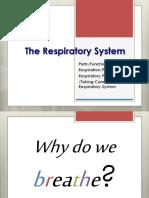 respiratory ppt.pdf