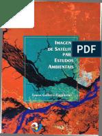IMAGENS DE SATELITE PARA ESTUDOS AMBIENTAIS.pdf