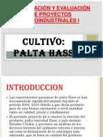 Formulación-y-evaluación-de-proyectos-agroindustriales-I-EXPOSICION (1).pptx