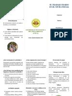 Brochure Educacion Inicial