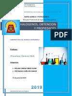 HALOGENOS OBTENCION Y PROPIEDADES.docx