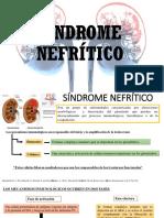 1 Sindrome Nefritico (1)