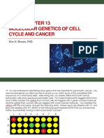 Bi 341 Chapter 13 Molecular Genetics of Cell Cycle and Cancer.kb