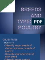 Kw Poultry Unit Pp