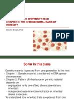 Bi 341 Chapter 3 the Chromosomal Basis of Heredity.post
