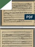 Mozart_figaro_arr_neefe2.pdf