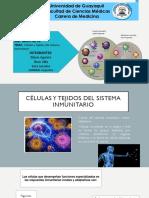 Células y Tejidos Del Sistema Inmunitario Inmuno