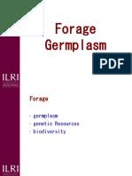 Forage Germplasm 2