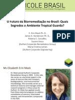 Biorremediacao No Brasil Elizabeth Mack Portugues