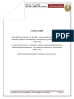 seorinformedegeologia-140519225459-phpapp02-convertido.docx