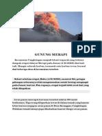 Dokumen Bencana Bye Zidan