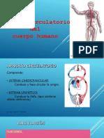 Sistema circulatorio diego (1).pptx