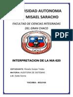 NIA 620 INTEEER.docx