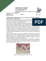 Cito anamalias.pdf