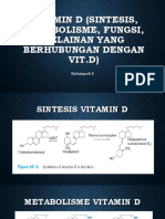 Vitamin d Sintesis Metabolisme Fungsi